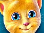 Кіт Джинджер