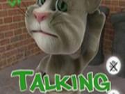 Говорящий Кот Тому