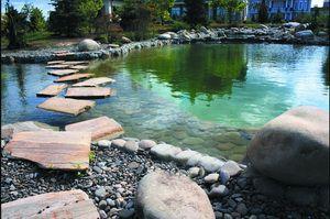 Плавальні ставки, еко-ставки, озера, штучні водойми