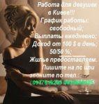 Найвищі гонорари в Києві
