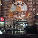 Пиво в Харкові. Пивний паб в Харкові.