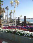 Легальна робота в Ізраїлі для чоловіків та жінок, сімейних пар