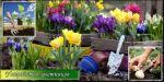 Пристрій квітників