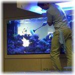 Обслуговування акваріумів Київ