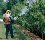 Обприскування рослин від хвороб і шкідників