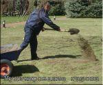 Мульчування газону (пескование газону)