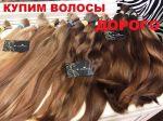 Куплю волосся. Продати волосся дорого. Вся Україна