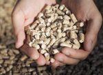 Пеллеты, экологичное биотопливо по оптовым ценам.