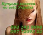 Скупка волосся по всій Україні. Продати волосся.