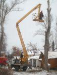 Видалення дерев Спиляти дерево Корчування пнів. покіс трави