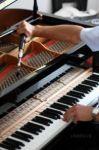 Настройка і ремонт фортепіано (піаніно, рояль)
