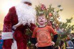 Дед Мороз на дом не дорого
