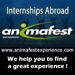 Animafest Experience. Стажування за кордоном