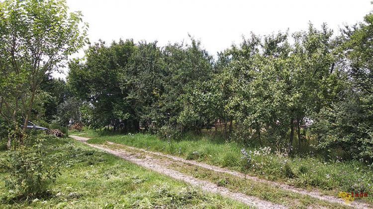 Ділянка прямокутна 20*30 м. Розташована в Новій Українці - фото