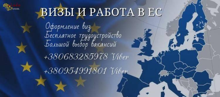 Офіційна робота в Польщі для кожного та легальні документи для відкриття ВІЗИ - фото