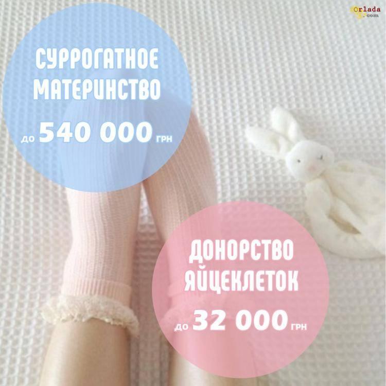 Сурогатное материнство | Вступить в программу | Оплата 540 000 грн, Schastematerinstva - фото