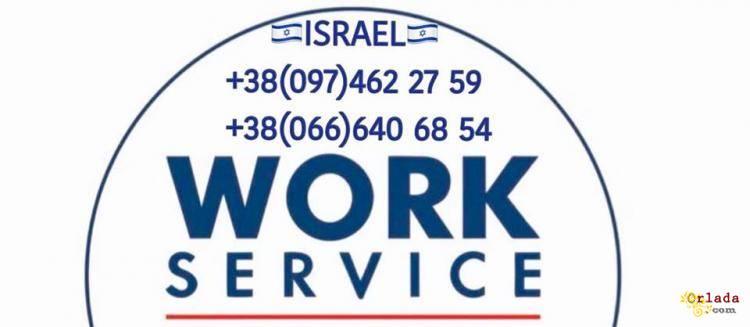Набір працівників в Ізраїль на червеньлипень - фото