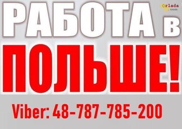Бесплатное трудоустройство в Польше | Работа в Польше для Украинцев. - фото