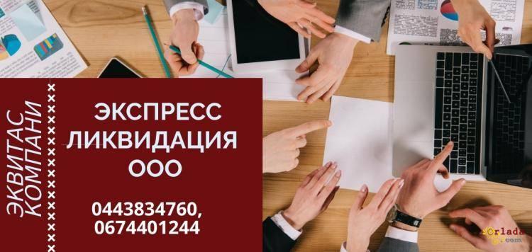 Повна ліквідація ТОВ за 1 день Харків - фото