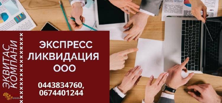 Ліквідація ТОВ під ключ за 1 день Одеса - фото