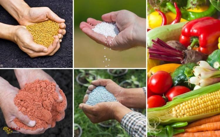 "Удобрения для сада и огорода. Агро центр ""B&S Product"" - фото"