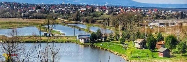 5га земля з озерами біля Трускавця - фото