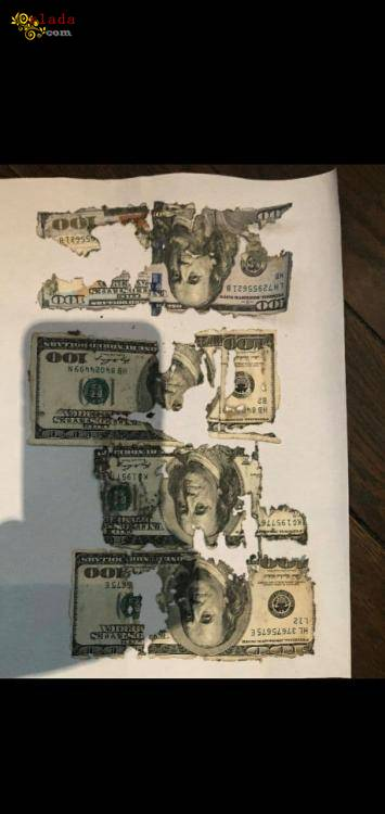 Обменять ветхие доллары - фото