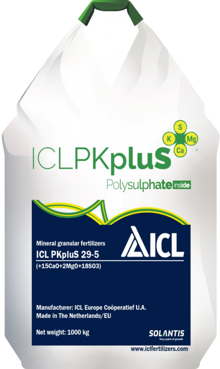 ICL PKpluS 29-5 (+2MgO+21CaO+18SO3)     Агро центр «B&S Product» - фото