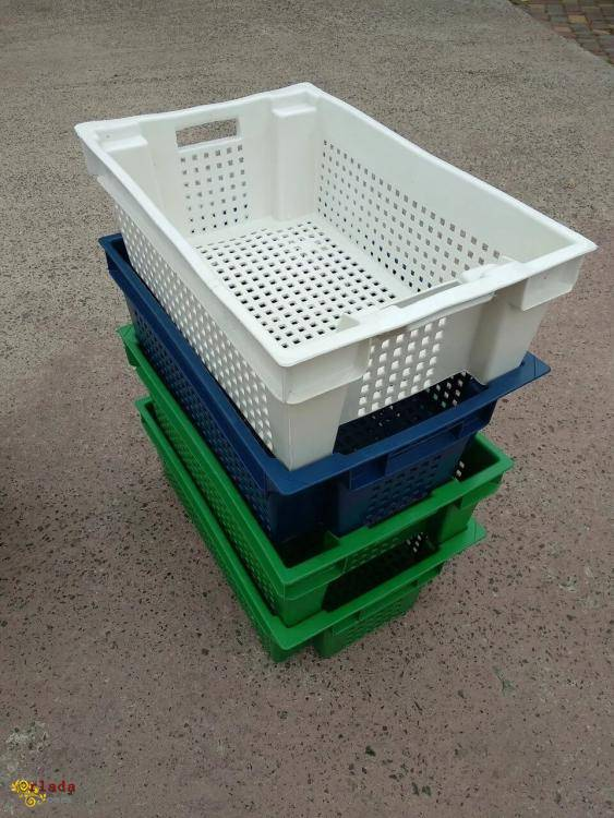 Харчові  пластикові ящики для м'яса молока риби ягід овочів у Житомирі  купити - фото