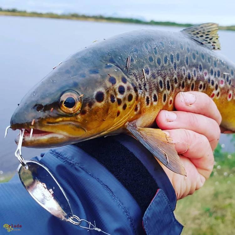 Рыболовные крючки оптом - лучшие цены, высокое качество - фото