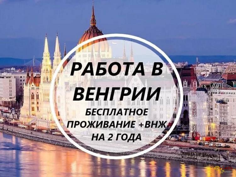 Срочный набор! Везем бесплатно c Украины по био! Работа в Венгрии! 700-950 долларов в меся - фото