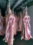 Продажа мяса. - фото 1