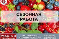Сезонная работа в Польше. Сбор овощей, фруктов, ягод, Днепр - фото 1