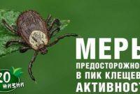 Уничтожение насекомых, грызунов - фото 6