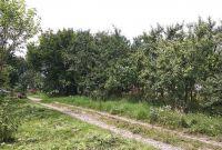 Ділянка прямокутна 20*30 м. Розташована в Новій Українці - фото 3