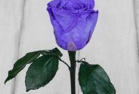 Роза в колбе - фото 3