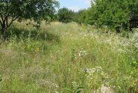 Продам участок 12 соток в живописном районе Киевской области. - фото 1