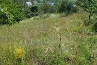 Продам участок 12 соток в живописном районе Киевской области. - фото 4