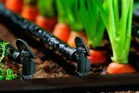 ✅  Агро Центр «B&S Product» || Купить семена Каланчак || Капельное Орошение. - фото 0