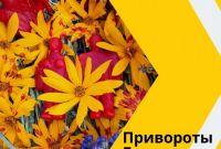 Расклады Таро на будущее. Обряды на замужество Киев. Снятие венца безбрачия Киев. - фото 1