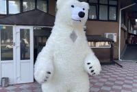 Начните продвижение с надувным костюмом белого медведя - фото 2